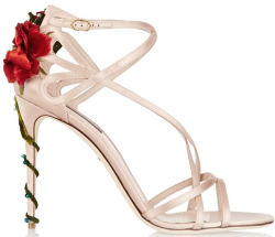 Dolce and gabanna heel with rose